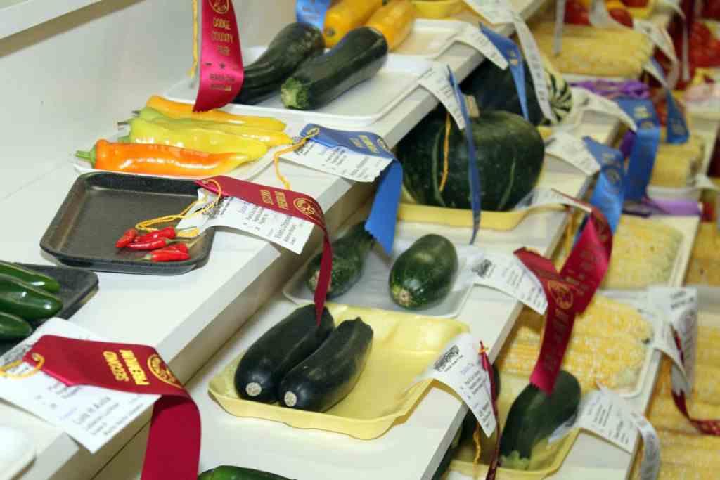 Vegetable Gardening Contest County Fair