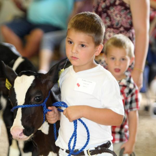 Junior Britches Showmanship Contest