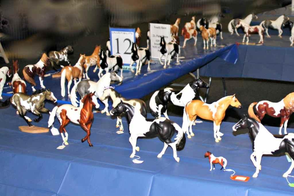 junior fair model horse judging