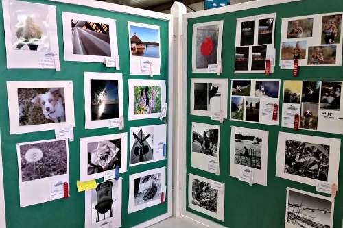 Junior Fair Photography Judging   Dodge County Fairgrounds