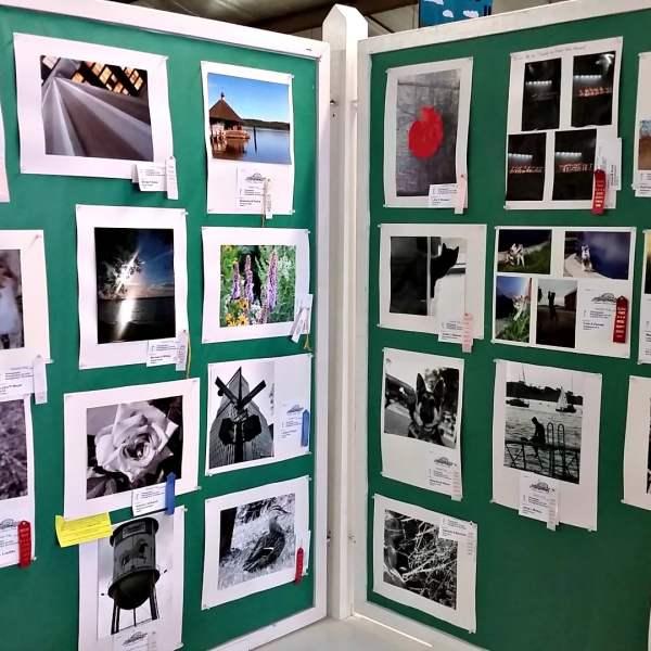 Junior Fair Photography Judging