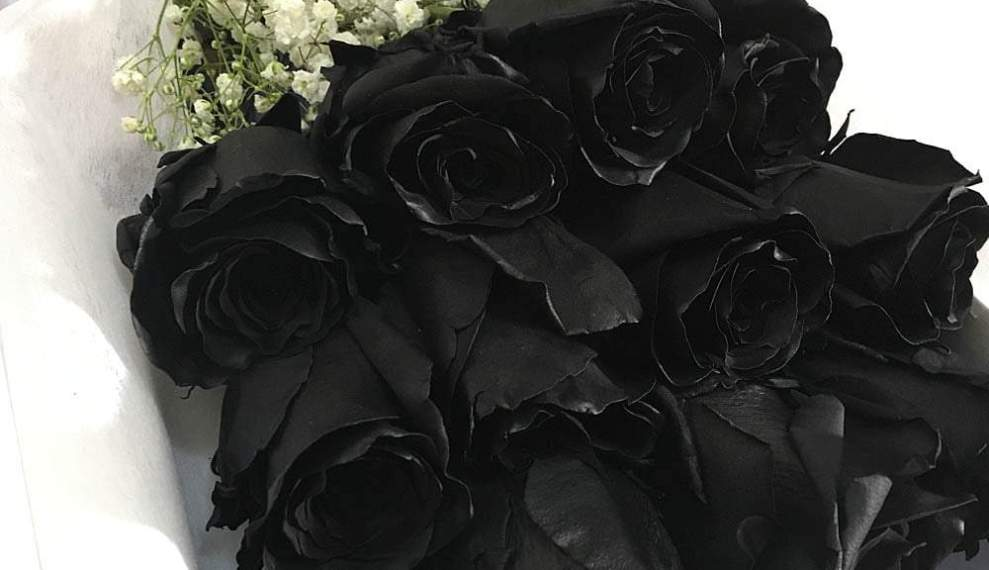 Black Roses Delivery- Importance Of Black Roses For Halloween