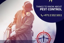 Pest Control - Best Things You Should Know About Them