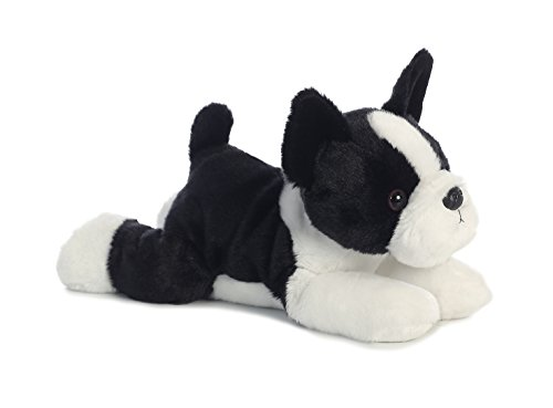 Boston Terrier rescue: Is It For You?