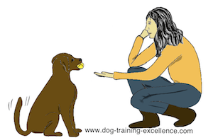 dog training hand signal drop it by DTE