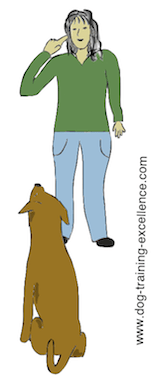 dog training hand signal watch or eye contact by DTE