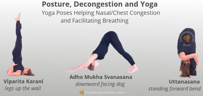 Natural Posture Pressure And Movement Decongestants