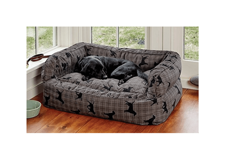 the best dog bed for labradors