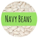Can Dogs Eat Navy Beans