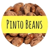 Can You give your dog pinto beans
