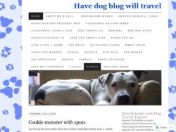 Have Dog Blog will Travel