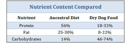 Canine Ancestral Diet versus Dry Dog Food