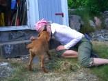 Här hjälper jag matte Fia med att rensa ogräs i stensättningen. Jag tror hon uppskattde det. Jag fick en ordentlig puss!