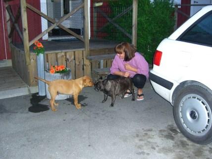 Innan vi gick hem tog vi en sväng förbi Molly och hennes matte å husse.