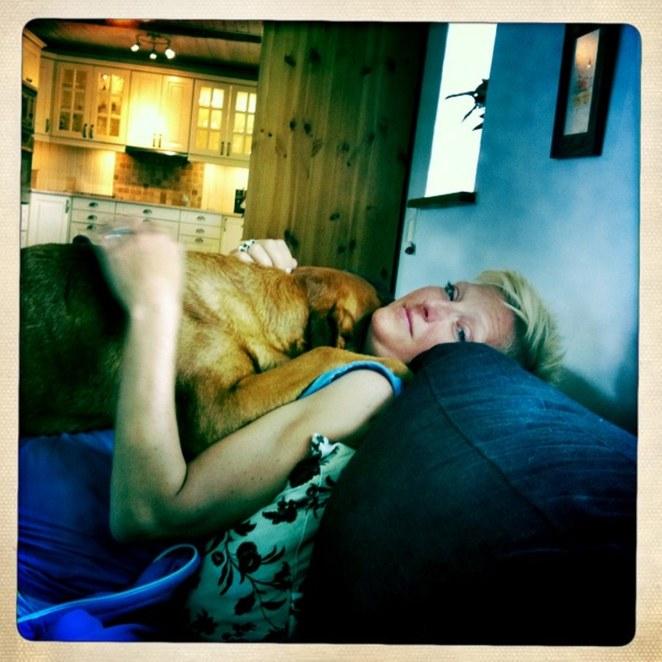 Fox å matte vilar ut hos Agneta & Christer i Skåne.