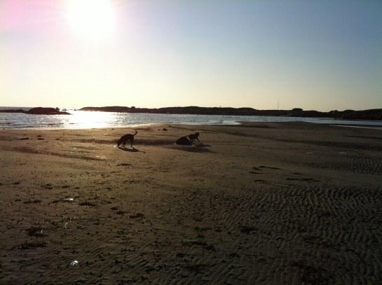 Hela stranden för oss själva!
