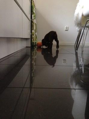 Sånt här golv har Hobby aldrig gått på tidigare!