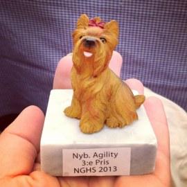 Idag tog 3:e pris i sin och Cocos första agilitytävling! Heja!