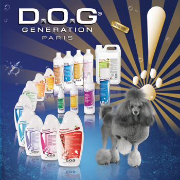 Image result for Dog Generation Paris