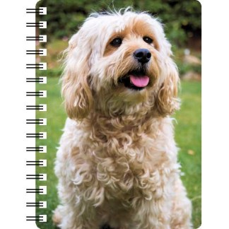 030717120338 3D Notebook Cockapoo 1