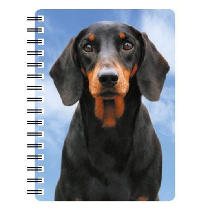 030717118144 3D Notebook Dachshund Black and Tan
