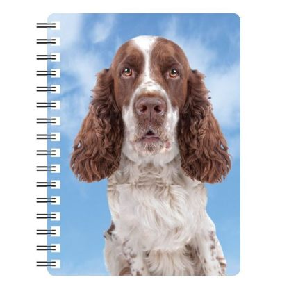 030717115648 3D Notebook English Springer Spaniel