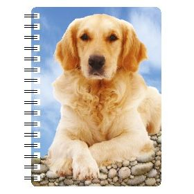 030717119950 3D Notebook Golden Retriever 3