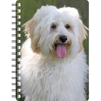 030717120284 3D Notebook Labradoodle Cream 1