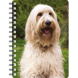 030717122264 3D Notebook Labradoodle Cream 2