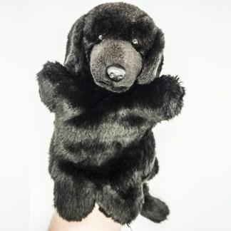 Labrador Black Glove Puppet