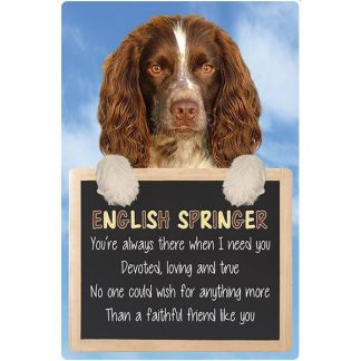 030717117291: 3D Hangable Verse English Springer