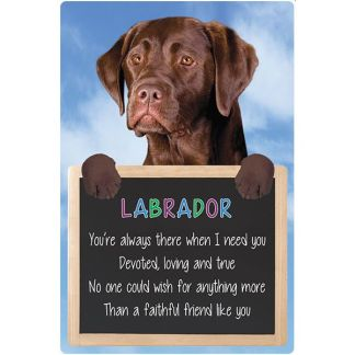 030717117369: 3D Hangable Verse Labrador Chocolate