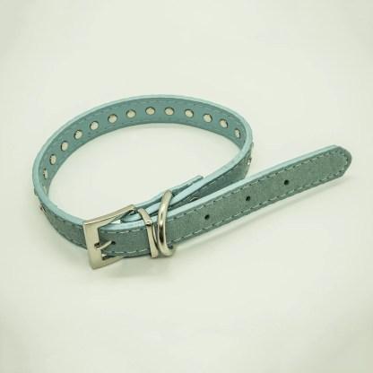 Wagytail Aqua Diamante Collar