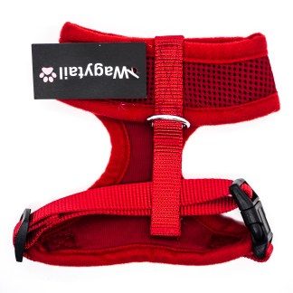 Red Harness Extra Small