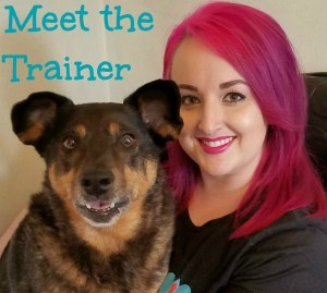 dog-trainer-in-tacoma