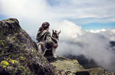 Hund und Berge