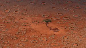 """Vista de los llamados """"anillos de hadas"""" de Namibia"""