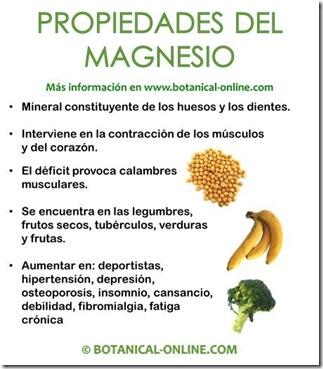 propiedades_magnesio