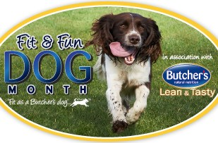 Fit & Fun Dog Month with Butcher's Pet Care 3