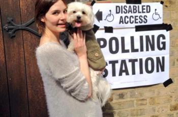 Dogs at Polling Stations - In 2015 it Became a 'Thing' 3