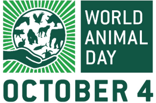 World Animal Day Makes Animal Welfare Global Event 5