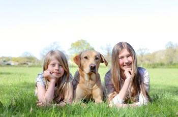 How to Keep Children and Dogs Safe Together 2