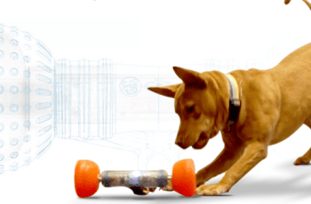 Could This Revolutionary SmartBone Completely Transform Your Dog's Alone Time? 4