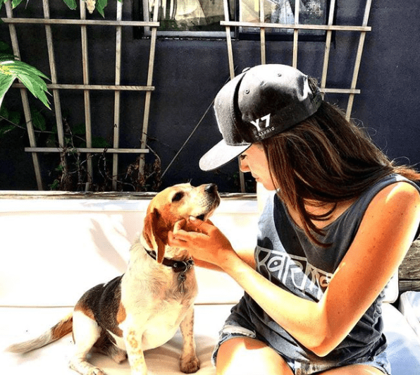 Why Did Meghan Markle Leave a Dog in Canada & How Will Guy Settle Into Life in London? - Dog Magazine