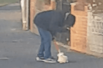 Member of Public Photographed This Man Beating a Puppy - Do You Know Him? 1