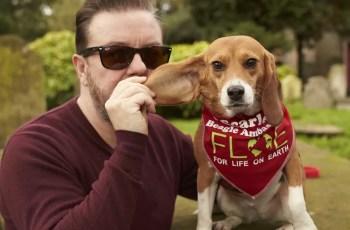 Beagle Saved from Animal Testing Wins 'Inspirational Animal' Award 4