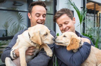 PHOTOS: TV's Ant and Dec Meet Canine Namesakes for a Good Cause 2