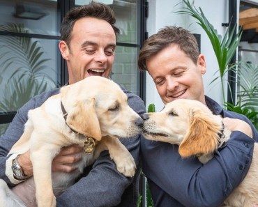 PHOTOS: TV's Ant and Dec Meet Canine Namesakes for a Good Cause 4