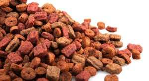 5 Genius Tricks for Storing Dog Food