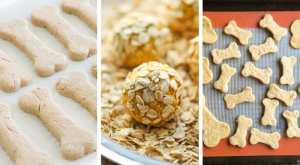Crazy Easy Dog Treat Recipes You Have To Make